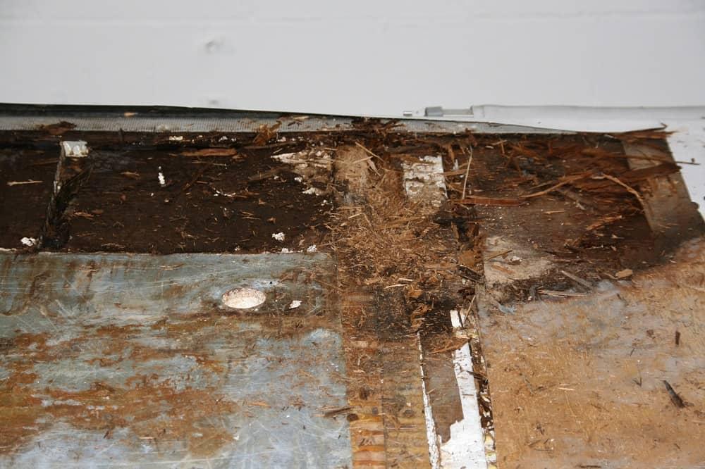 water ingress part two gallery item